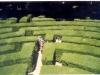 177-1999-sperduti-nel-labirinto-di-villa-pisani-di-ritorno-da-mestre
